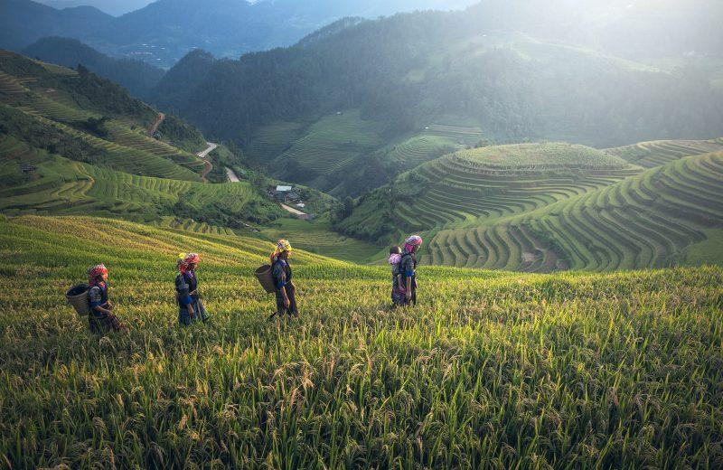Egzotyczna podróż do Malezji